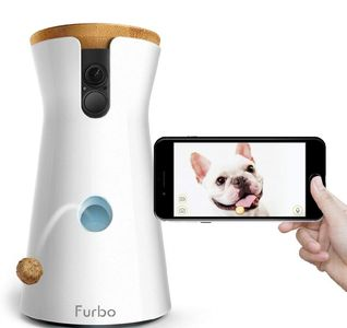 Recommended dog camera monitor reviews.  Furbo dog camera.