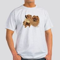 Gifts for the Pomeranian lover.  Pomeranian themed shirts for the dog owner.  Pomeranian shirts