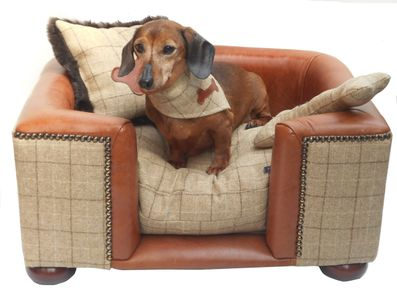 Luxury  handmade leather and tweed dog bed with dachshund