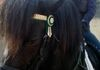 Sophia and handsome Diego with his dark green and gold show browband.