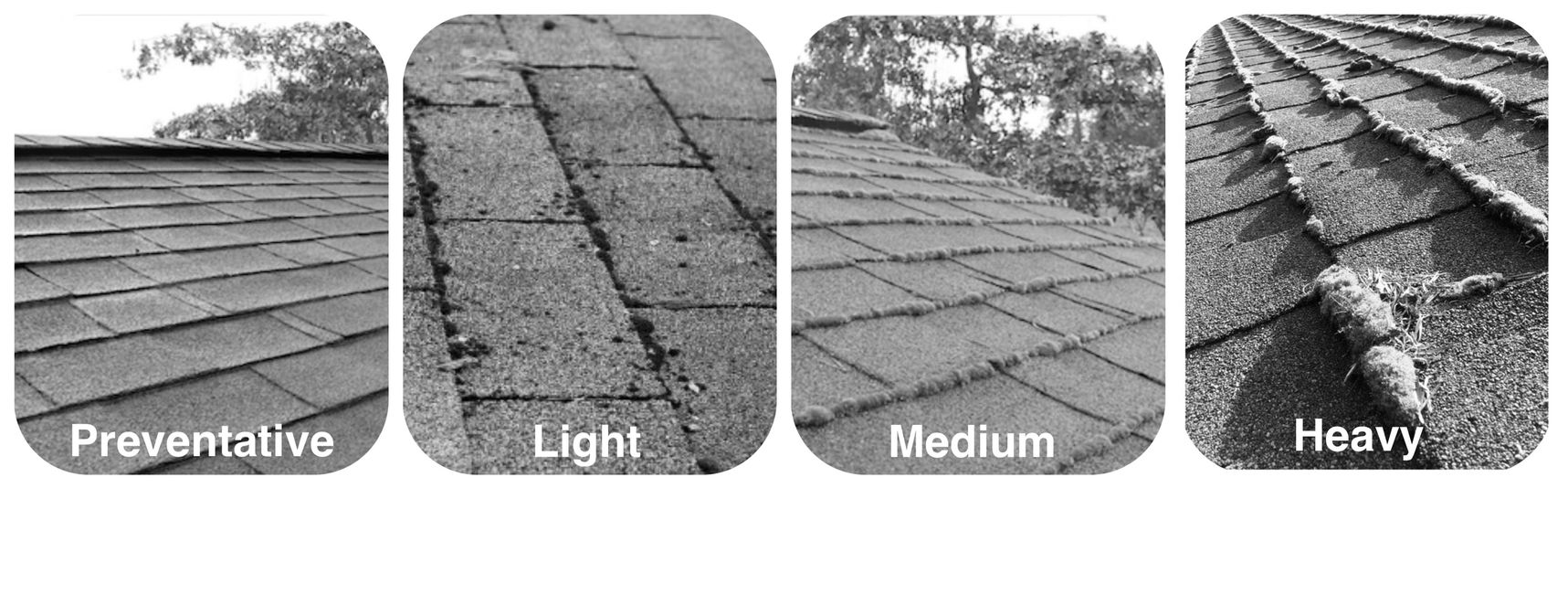 Choose between Preventative, Light, Medium, or Heavy moss conditions on the roof.