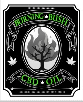 The Burning Bush
