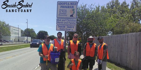 Seaside Seabird Sanctuary volunteers picking up trash in Seminole through the Adopt-A-Mile program.