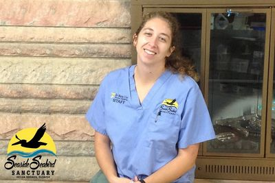 The Seaside Seabird Sanctuary's Avian Hospital Director, Melissa Dollard.