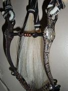 E. Garcia bit on the Montana prison made horsehair hitched bridle