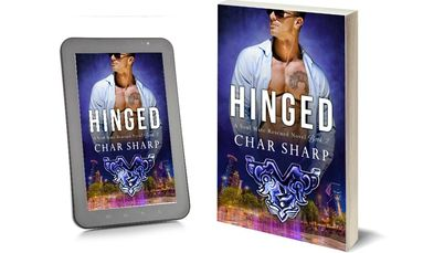 Hinged, Soul Mate Rescued, Kidnapped, Hacker, Detective, Amnesia, romantic suspense, mystery, thrill