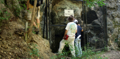 Workers inspecting the fenced entrance to the Cumberland Bone Cave.