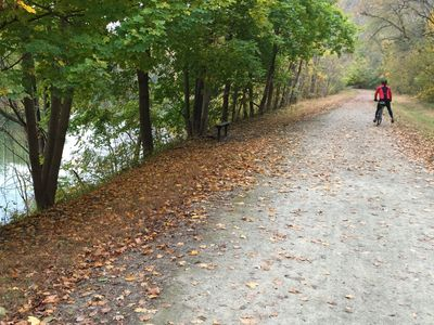 Cyclist on the Great Allegheny Passage near West Newton, PA