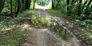 Puddles are often unavoidable on the C&O Canal