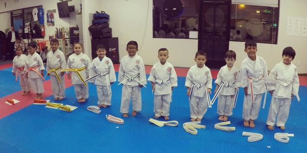Karate for Kids as young as 4 years old.