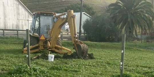 Excavate about eight feet deep for a septic system soil profile in Pleasanton, CA.