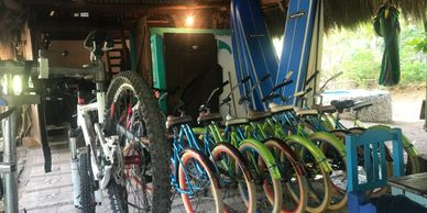 Bicycle Rentals Punta de Mita -Mountain Bikes  -Cruiser Bikes