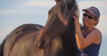 Equine Mental Health, Horse Therapy, EFT, Equine Therapy