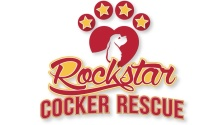 Rockstar Cocker Spaniel Rescue