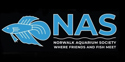 Norwalk Aquarium Society