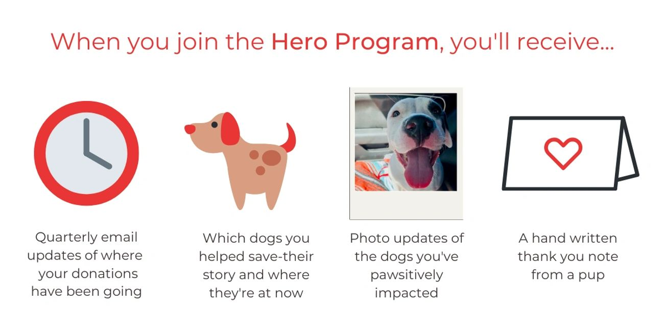 Hero Program from The Little Red Dog