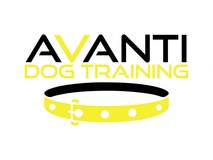 Avanti Dog Training