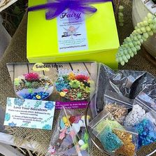 Succulent fairy garden kit by partyn with plants