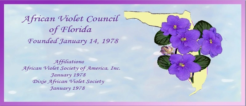 African Violet Council of Florida