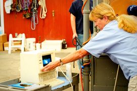 Liz Scott DVM performs a reproductive ultrasound on a mare