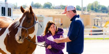 Shane Smith DVM discusses treatment options for a horse with its owner
