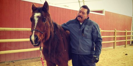 Eligio Rodriguez works with a young unbroke horse at Idaho Equine Hospital