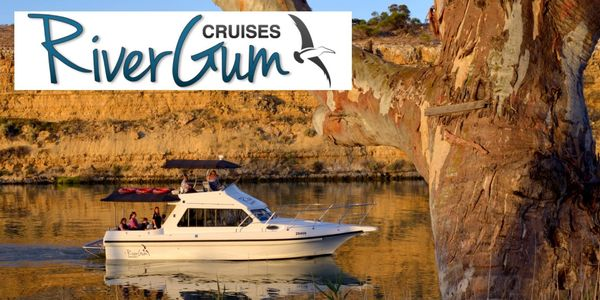 Enjoy a relaxing cruise on the Murray River, enjoying the quiet, smooth waters around Waikerie.