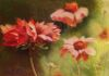 "Echinacea. Pastel 24""x18"" Available"