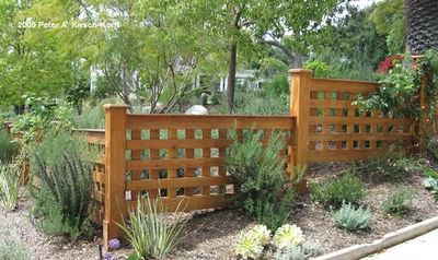 Beefy or cedar fencing , local fence contractor 1 stop fence company on Vancouver Island