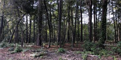 homesite, deep water access nearby, acreage,