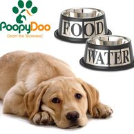 yellow lab, dog bowls, dog water bowl, dog food bowl