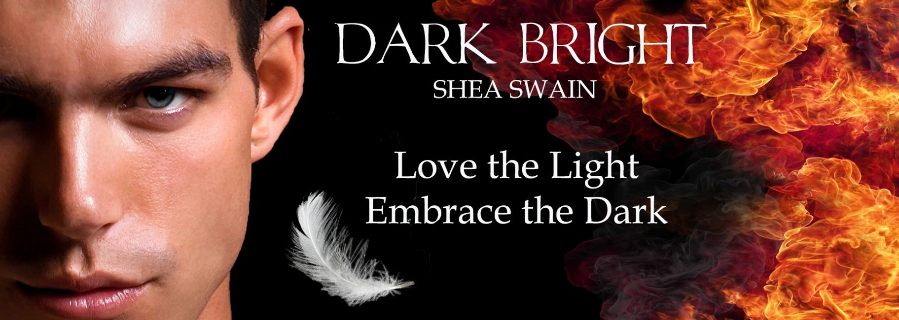 Dark Bright, Angel and Demons paranormal Romance by Shea Swain