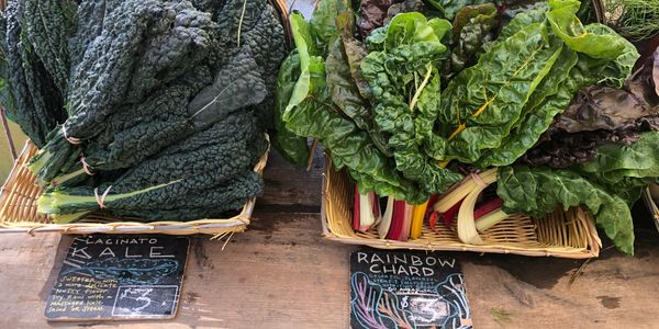 Kale & Rainbow chard at the greenmarket