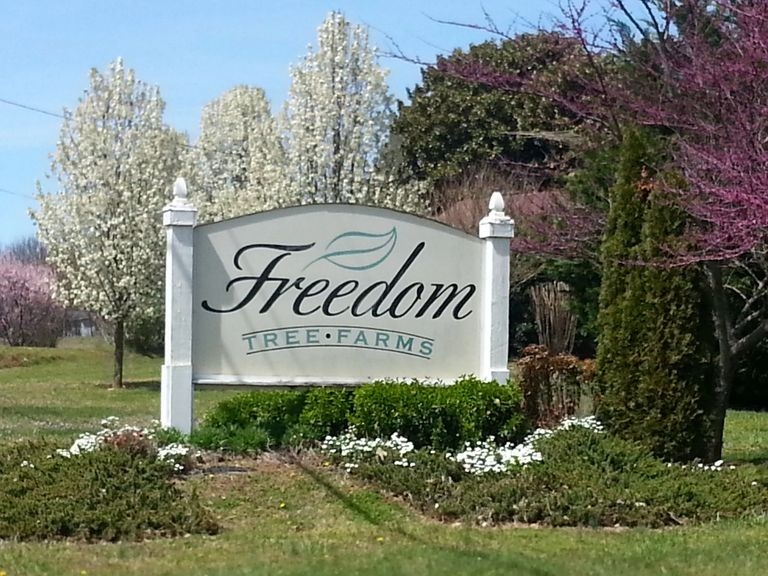 Freedom Tree Farms Sign