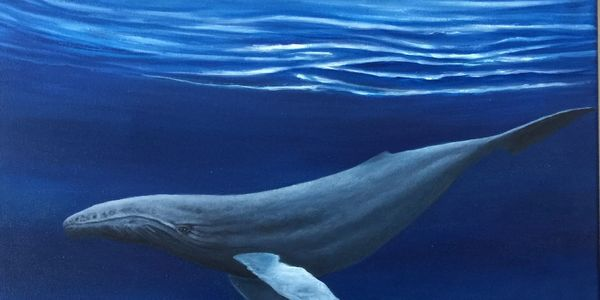Humpback Whale under the surface of the water. Painting in oils