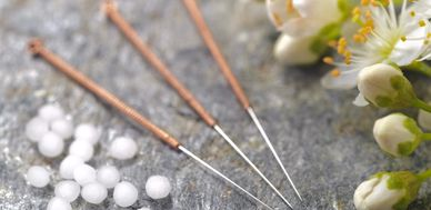 Veterinary Acupuncture needles
