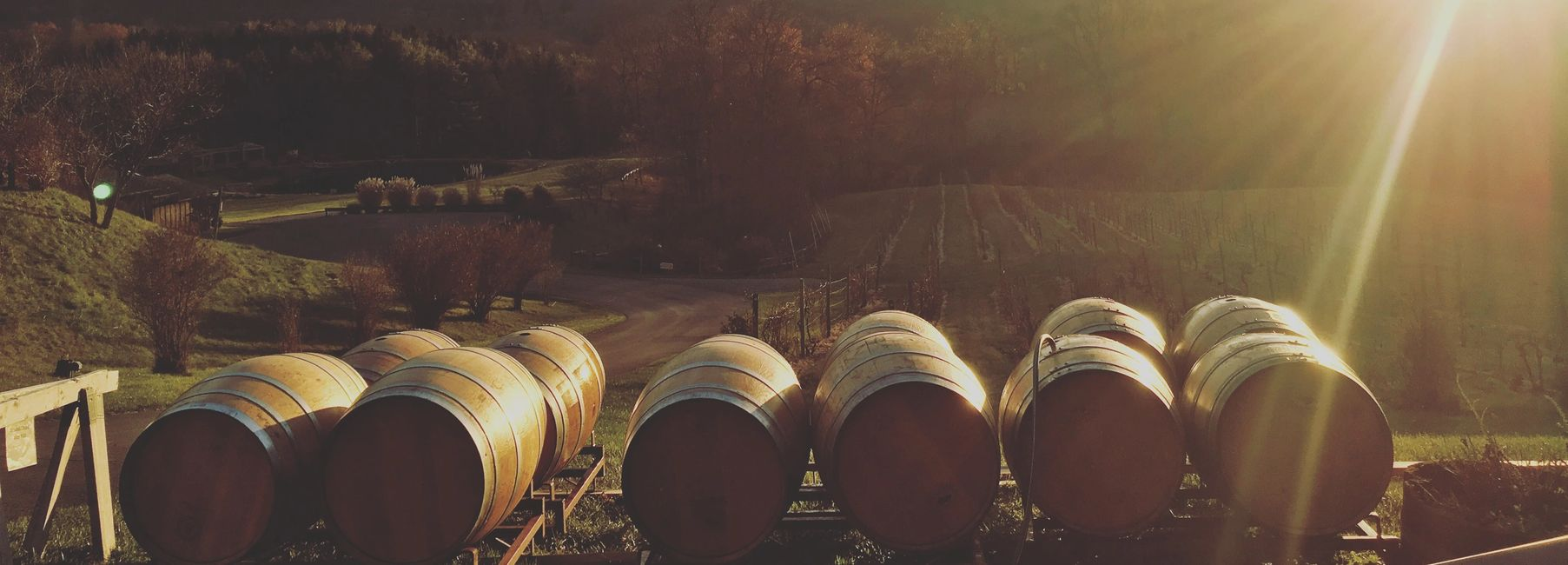 Picture of barrels with sunsetting behind them