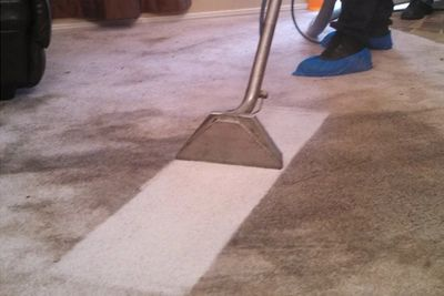 Cleaning and transforming some of the dirtiest carpets in Massachusetts.