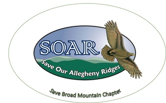 Save Broad Mountain