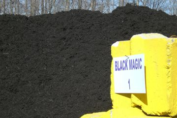 Black Magic Mulch
