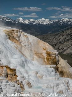 yellowstone, photography workshop, photography tour, photography class, winter, wyoming