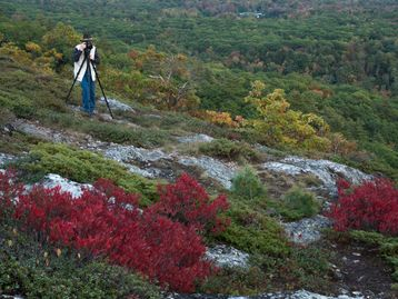 maine, camden, acadia national park, photography workshop