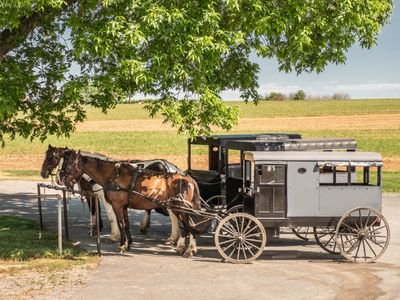 amish, farm, lancaster, pennsylvania, photography workshop, photography class, photo tour