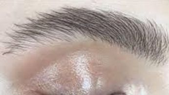 brows permanent microblading best in Tampa microblading brows microblading a tatto microblading