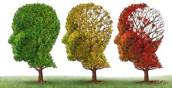 How to prevent getting dementia or Alzheimer's.