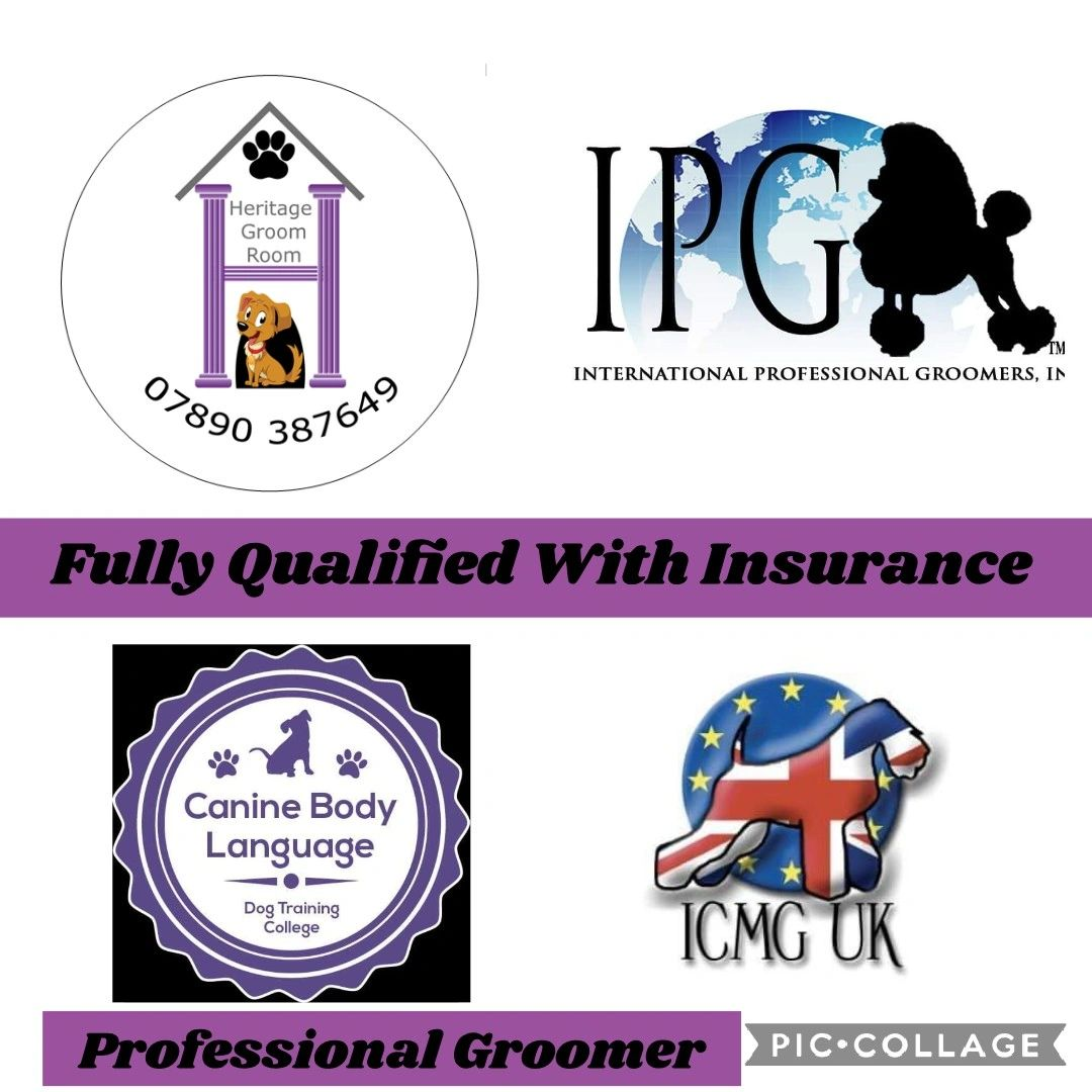 Qualified dog groomer, one to one home salon.