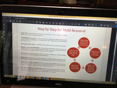 Mold Testing, Mold Removal, Water Damage, Mold Cleanup. Mold Remediation, Black Mold Removal Flood