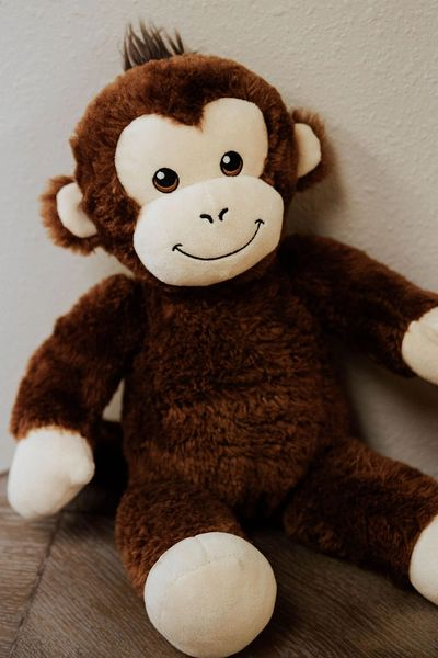Meet Marcelle, the Neurofeedback Monkey!