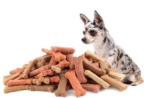 Dog Treats and various treats on Chewy.com
