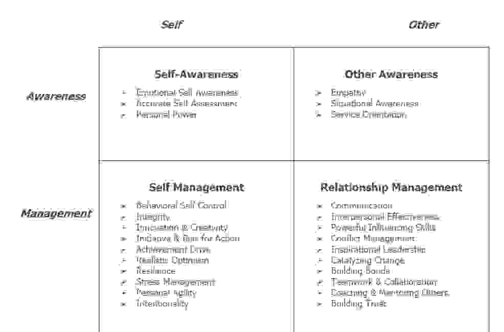 social emotional intelligence model for self-awareness
